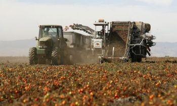 organic farming statistics, organic agriculture trends