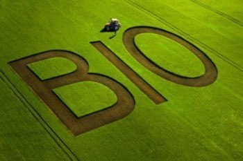 organic farming statistics, organic farming trends,