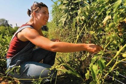 organic farm idea