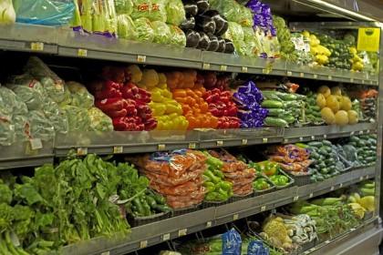 Organic Food Industry