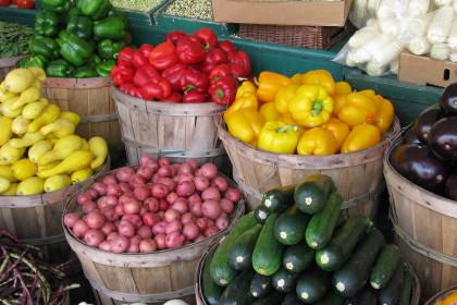 Fresh Organic Food