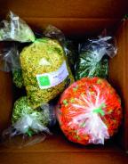 organic herbs to medicine