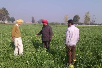 India Farmers Organic