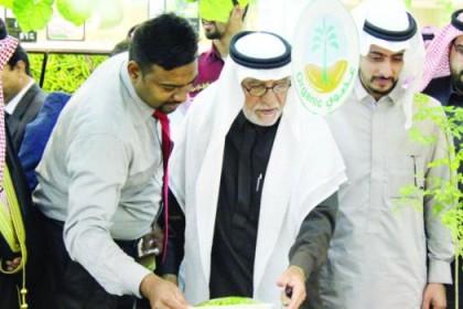 Organic Farmic in Saudi