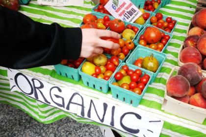 Organic producers certificate