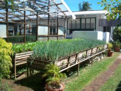 organic farming help