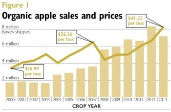 organic food industry analysis, organic fruit production, organic farming statistics,