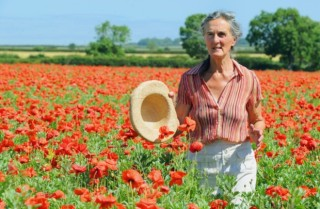 organic farming, organic tips