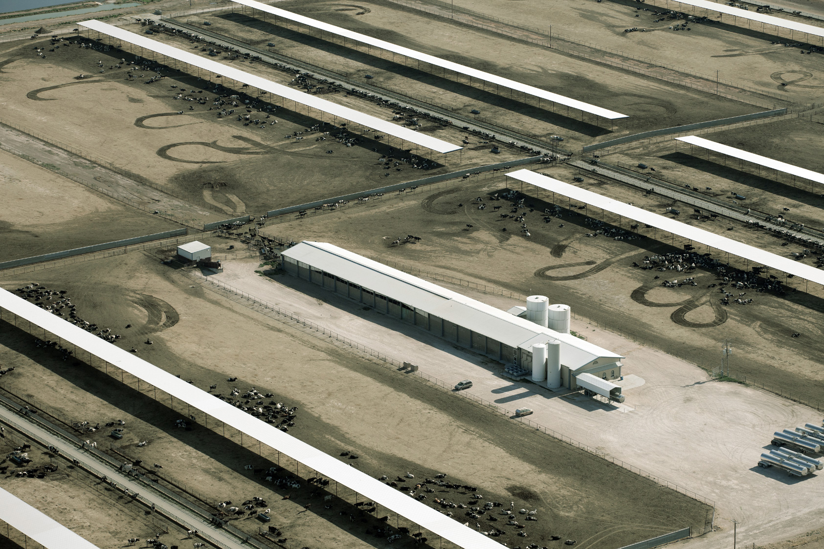 USDA Criticized for Organic Livestock Proposal