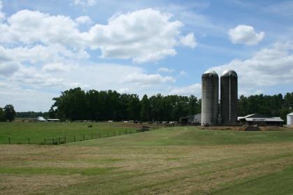 North_Carolina organic farm