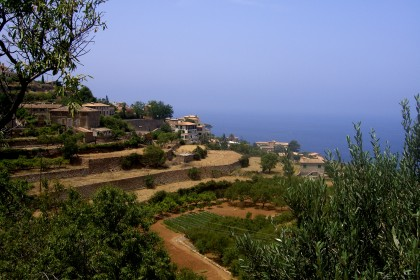 organic farming in valencia