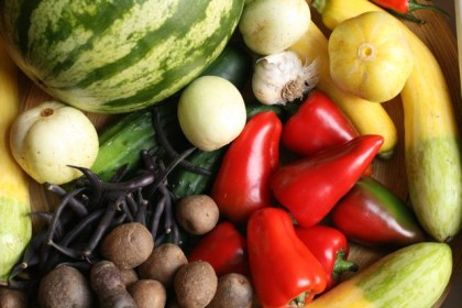 organic food can feed the world
