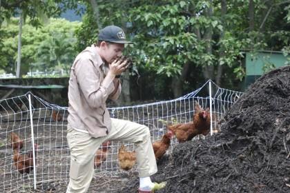 Hawaii organic farming
