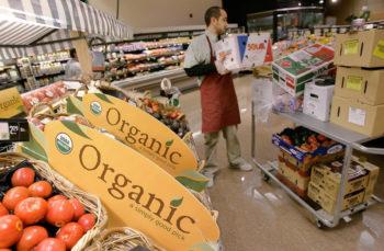 ota organic