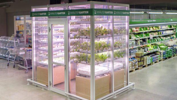 Berlin Startup Infarm Aims To Put Tiny Vertical Farms In Grocery Stores