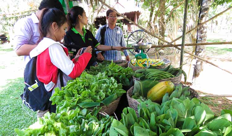 Organic farm is first EU standard in Cambodia